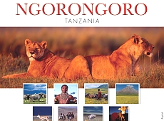 Ngorongoro Conservation Area Authority (NCAA)